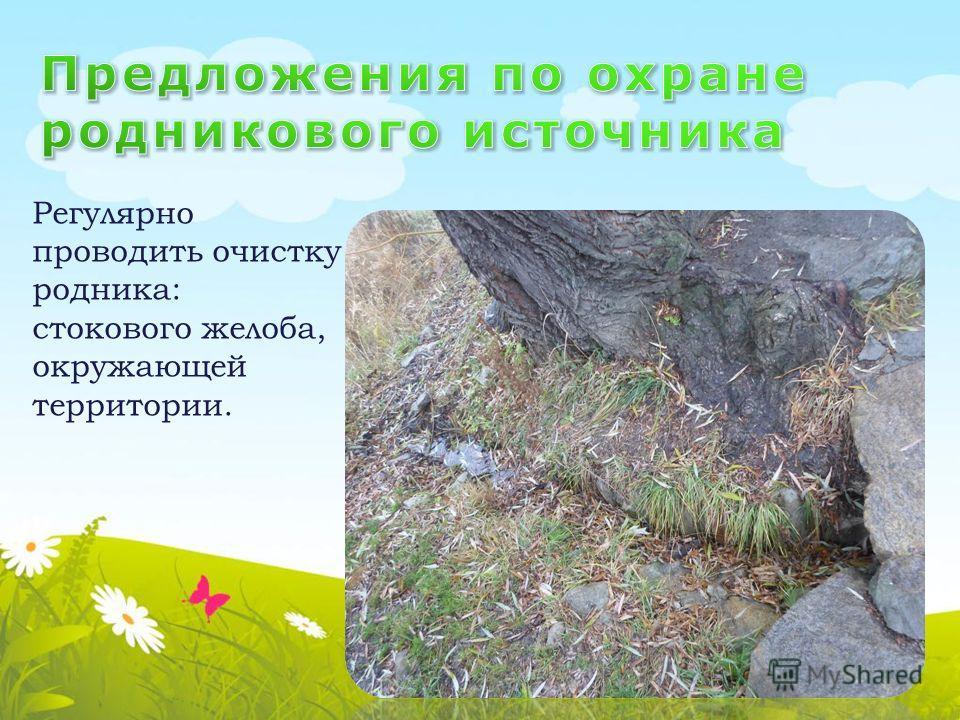 Регулярно проводить очистку родника: стокового желоба, окружающей территории.