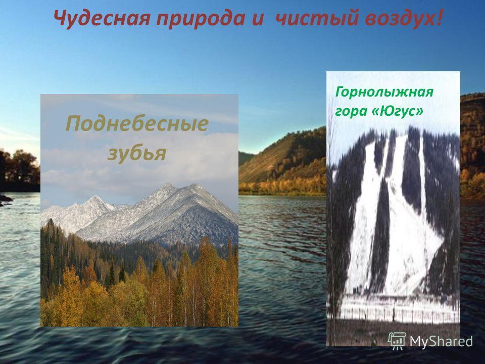 Дворцы Культуры «Распадская» и «Имени Ленина» Ледовый дворец «Кристалл»
