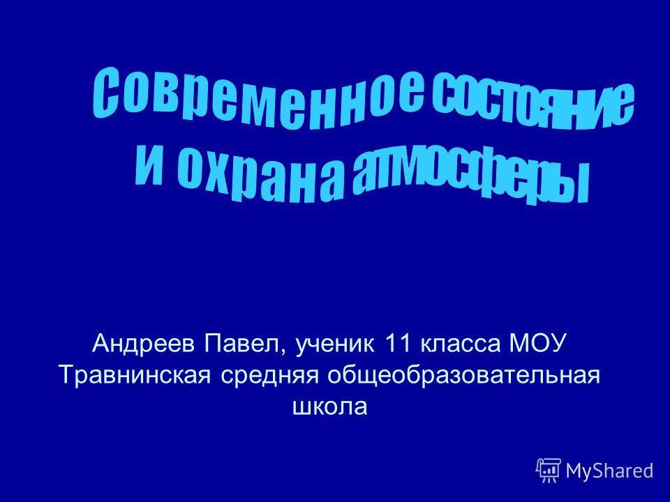 Андреев Павел, ученик 11 класса МОУ Травнинская средняя общеобразовательная школа