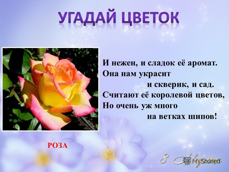 На полянке рос цветок, Словно стрелка, стебелёк, А на тонком стебелёчке Ярко-синие звоночки. КОЛОКОЛЬЧИК 3