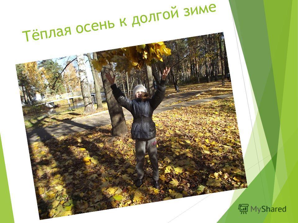 Тёплая осень к долгой зиме