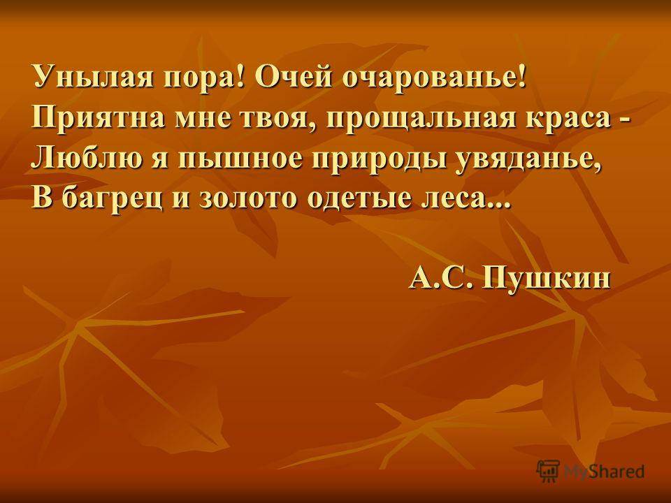 Унылая пора! Очей очарованье! Приятна мне твоя, прощальная краса - Люблю я пышное природы увяданье, В багрец и золото одетые леса... А.С. Пушкин