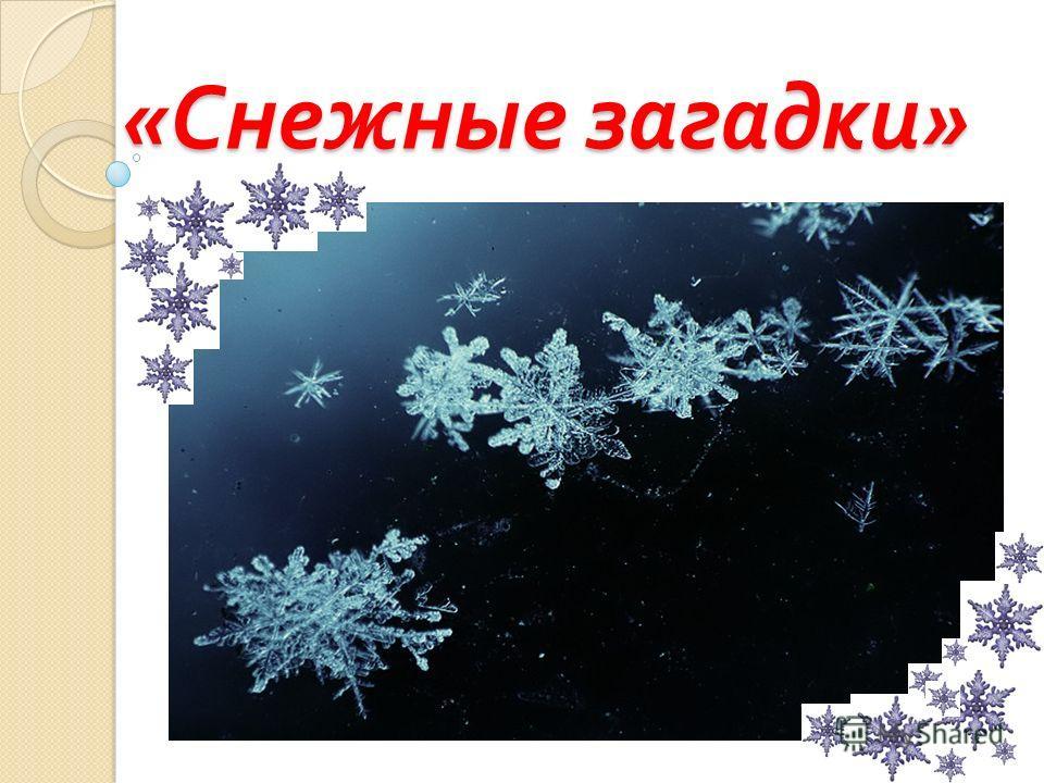 « Снежные загадки »