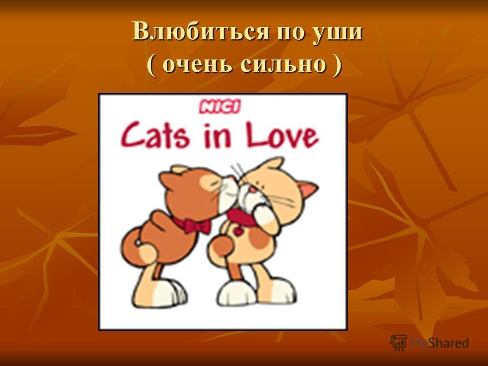 Влюбиться по уши ( очень сильно ) Влюбиться по уши ( очень сильно )