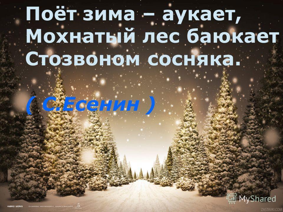 Поёт зима – аукает, Мохнатый лес баюкает Стозвоном сосняка. ( С.Есенин )
