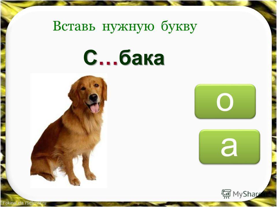 FokinaLida.75@mail.ru о о а а Вставь нужную букву С…бака