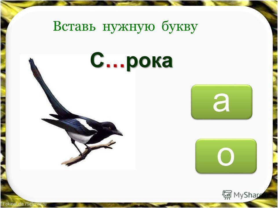 FokinaLida.75@mail.ru о о а а Вставь нужную букву С…рока