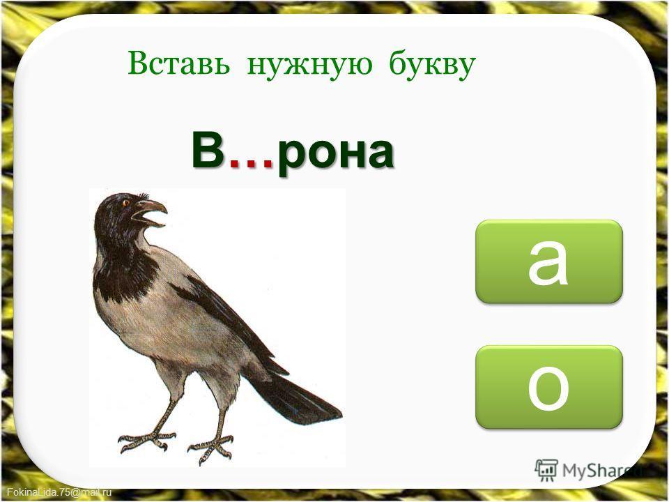 FokinaLida.75@mail.ru о о а а Вставь нужную букву В…рона