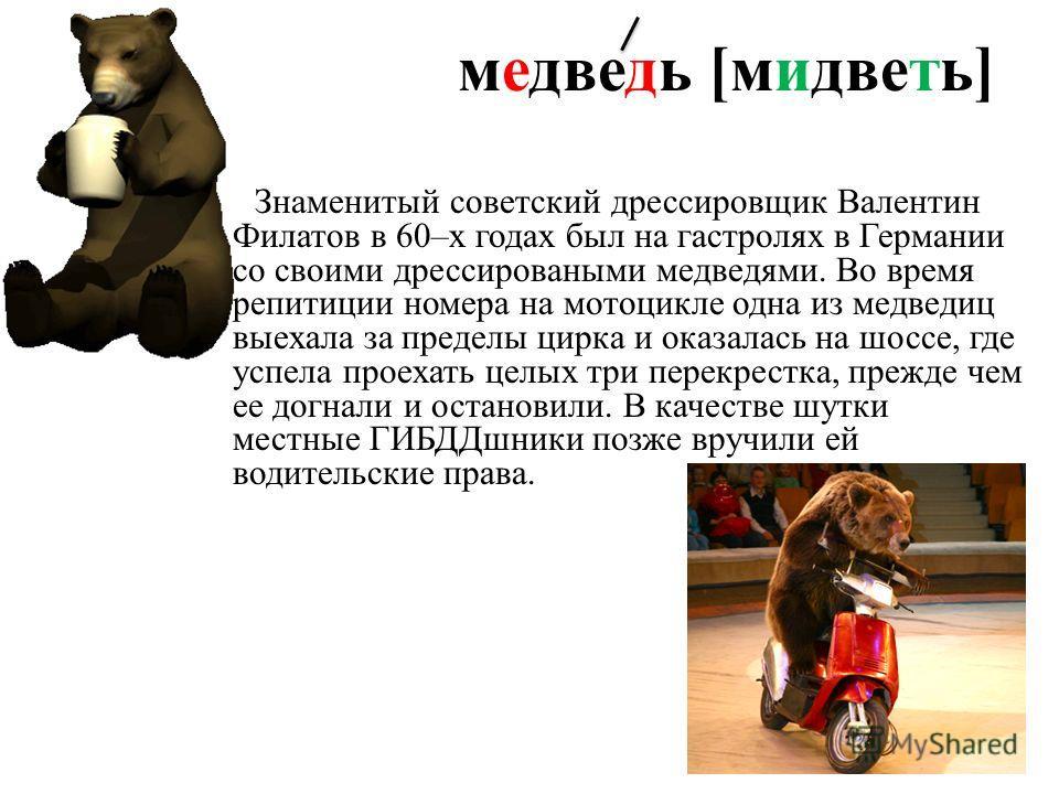 медведь [мидветь] Знаменитый советский дрессировщик Валентин Филатов в 60–х годах был на гастролях в Германии со своими дрессироваными медведями. Во время репитиции номера на мотоцикле одна из медведиц выехала за пределы цирка и оказалась на шоссе, г