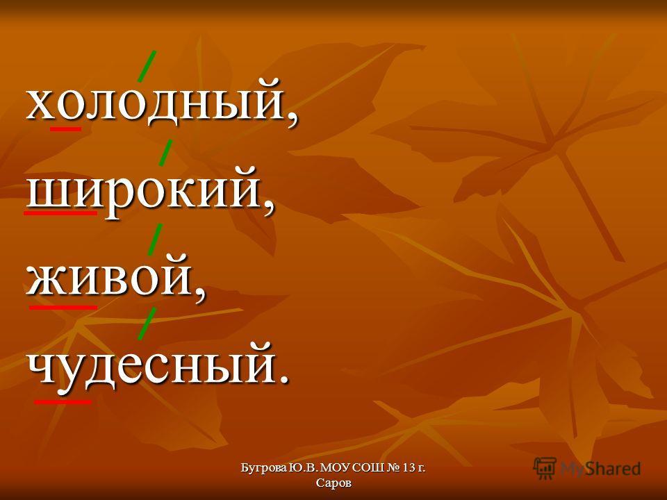 Бугрова Ю.В. МОУ СОШ 13 г. Саров холодный,широкий,живой,чудесный.