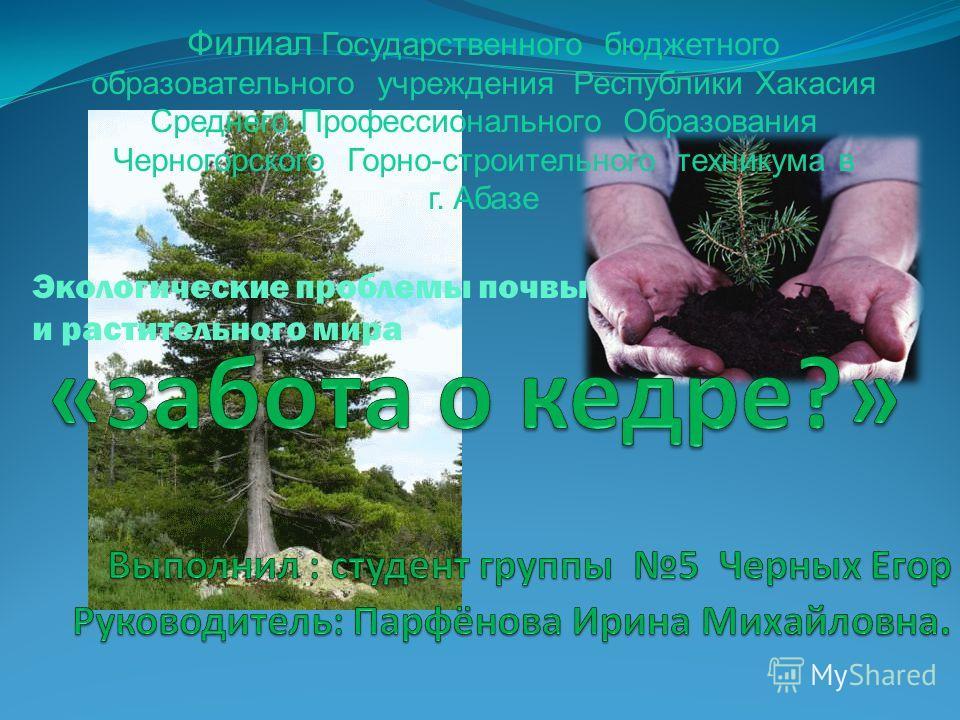 Филиал Государственного бюджетного образовательного учреждения Республики Хакасия Среднего Профессионального Образования Черногорского Горно-строительного техникума в г. Абазе Экологические проблемы почвы и растительного мира