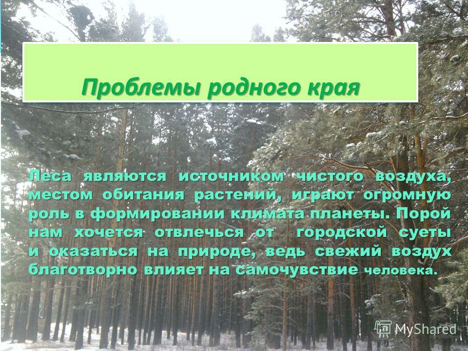 П Проблемы родного края Леса являются источником чистого воздуха, местом обитания растений, играют огромную роль в формировании климата планеты. Порой нам хочется отвлечься от городской суеты и оказаться на природе, ведь свежий воздух благотворно вли