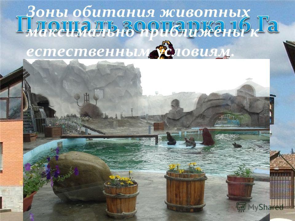 Галина Кустова