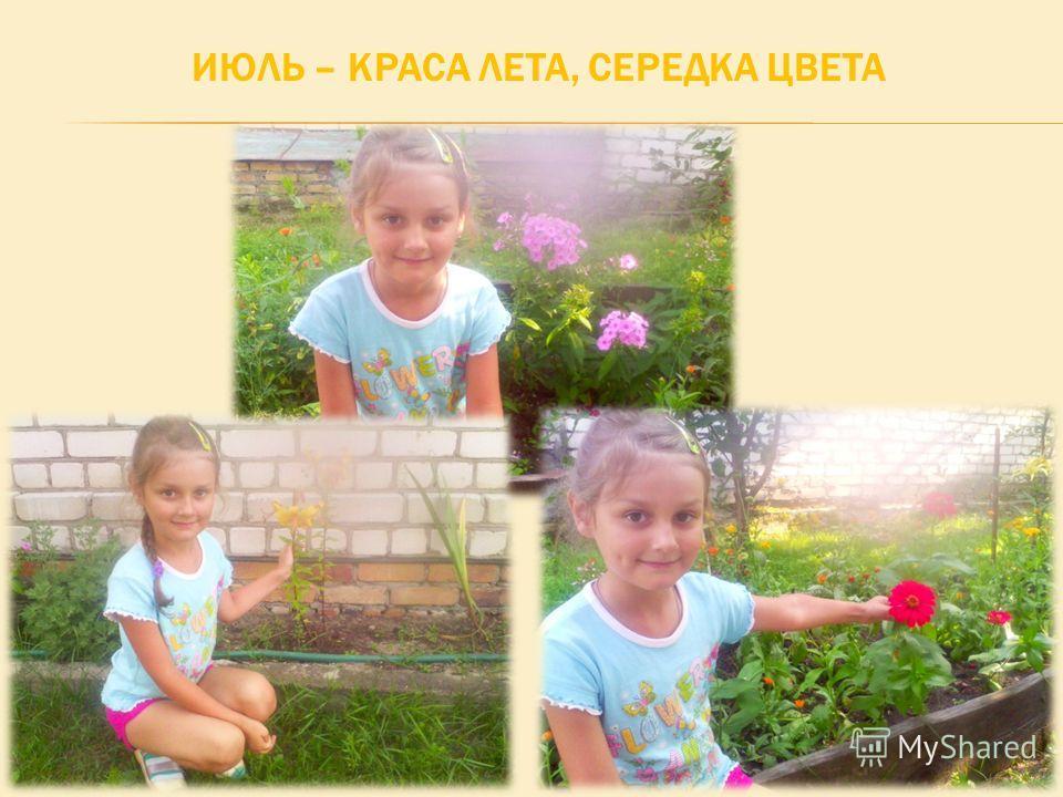 ИЮЛЬ – КРАСА ЛЕТА, СЕРЕДКА ЦВЕТА