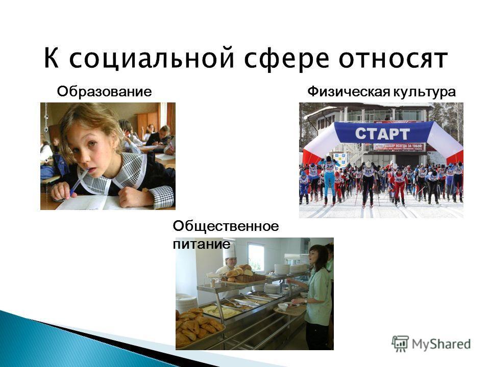 Образование Общественное питание Физическая культура