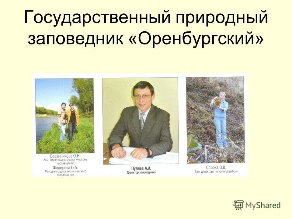 Государственный природный заповедник «Оренбургский»
