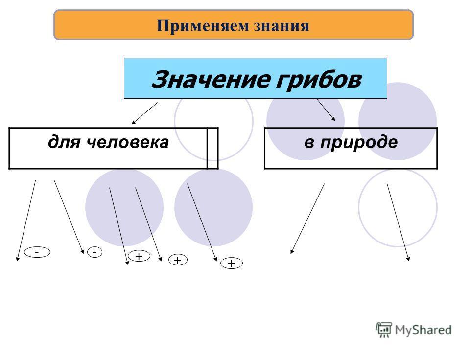 для человека в природе Значение грибов -- + + + Применяем знания
