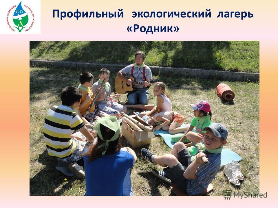 Профильный экологический лагерь «Родник»