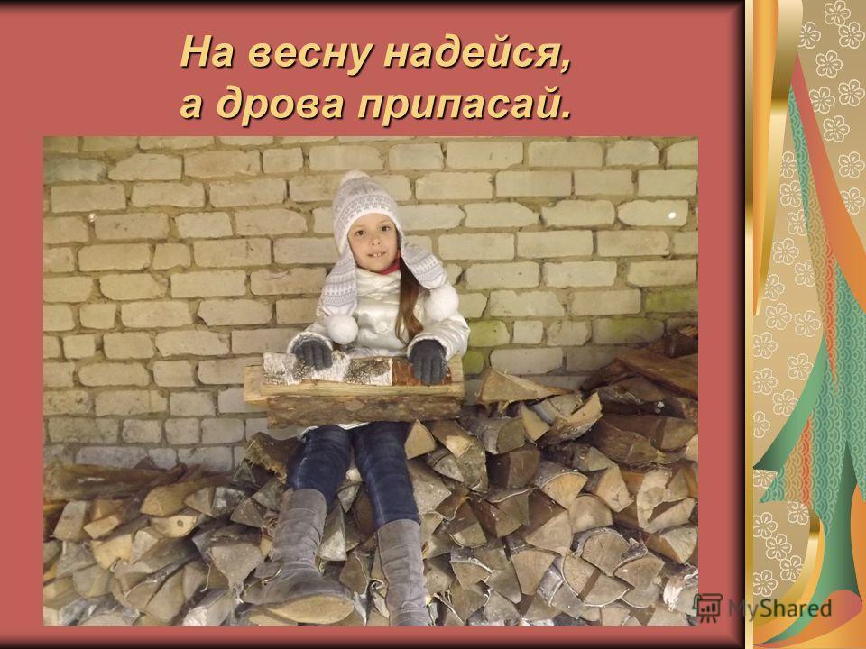 На весну надейся, а дрова припасай.