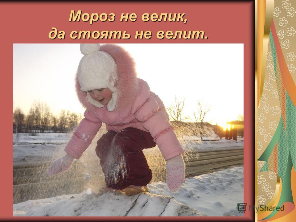Мороз не велик, да стоять не велит.