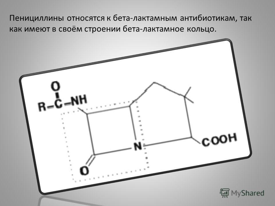 Пенициллины относятся к бета-лактамным антибиотикам, так как имеют в своём строении бета-лактамное кольцо.