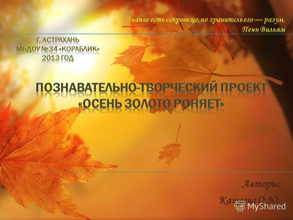 Авторы: Кащеева О.Ю.