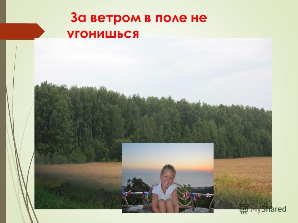 За ветром в поле не угонишься
