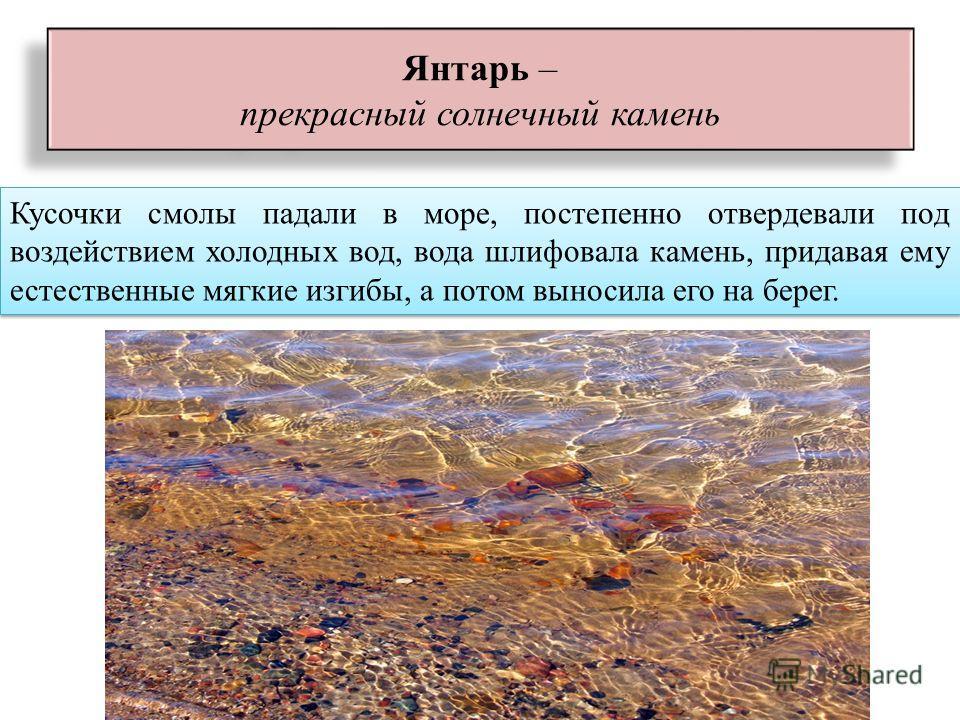 Кусочки смолы падали в море, постепенно отвердевали под воздействием холодных вод, вода шлифовала камень, придавая ему естественные мягкие изгибы, а потом выносила его на берег. Янтарь – прекрасный солнечный камень