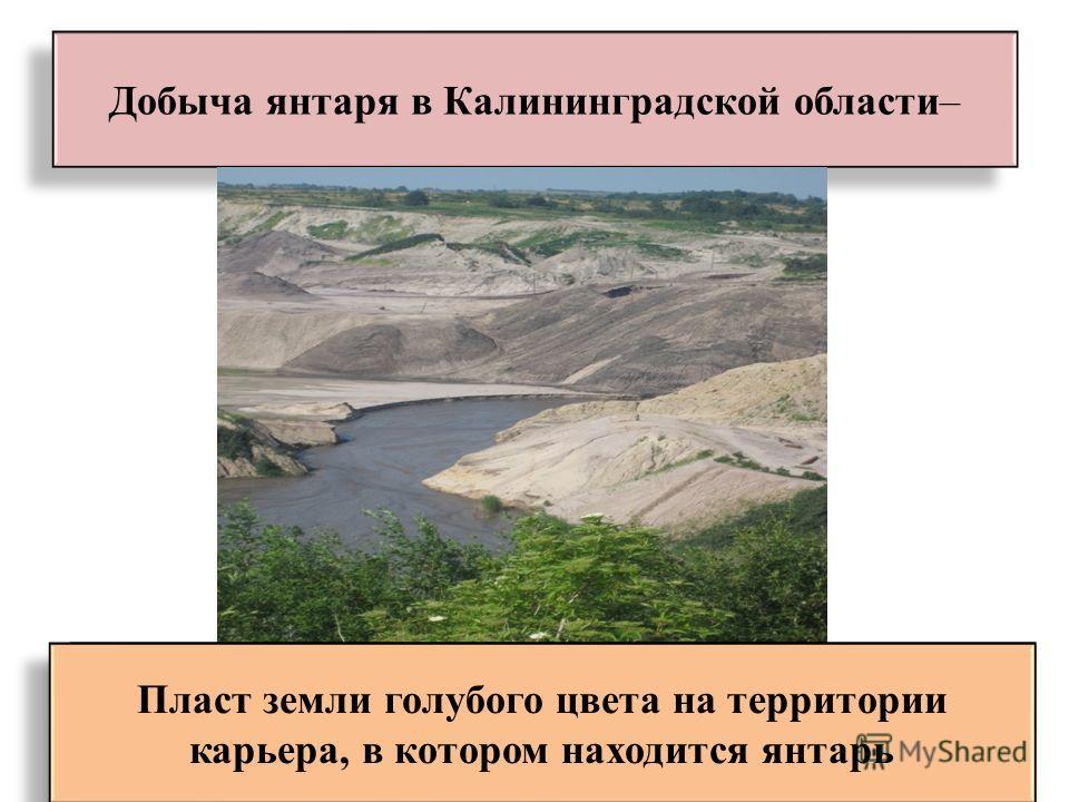 Добыча янтаря в Калининградской области– Пласт земли голубого цвета на территории карьера, в котором находится янтарь