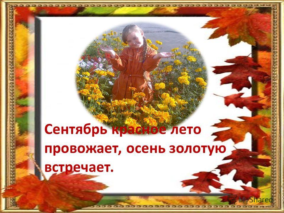 Сентябрь красное лето провожает, осень золотую встречает.