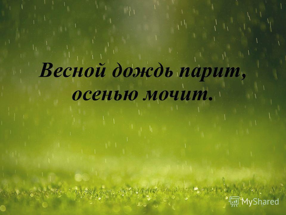 Весной дождь парит, осенью мочит. 4