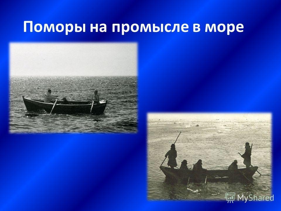 Поморы на промысле в море