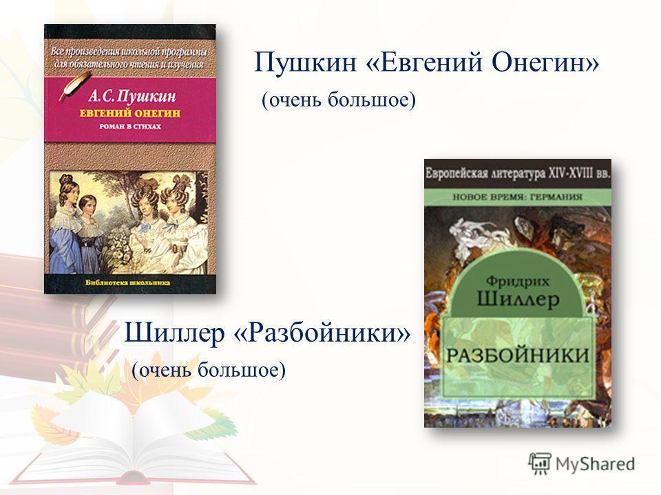 Пушкин «Евгений Онегин» (очень большое) Шиллер «Разбойники» (очень большое)