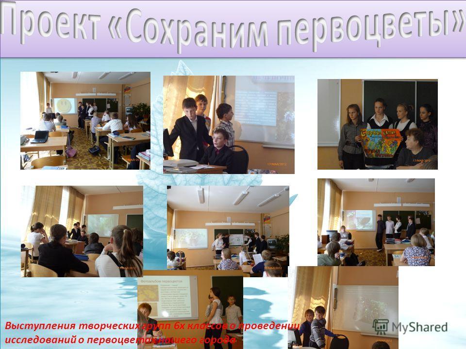 Выступления творческих групп 6х классов о проведении исследований о первоцветах нашего города