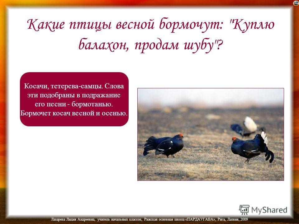Все ли перелетные птицы улетают от нас осенью на юг? Если не все, то объясните. Не все. Некоторые улетают от нас осенью на восток (через Уральские горы), например, маленькая певчая птичка бормотушка, чечевичник куличок-плавунчик.