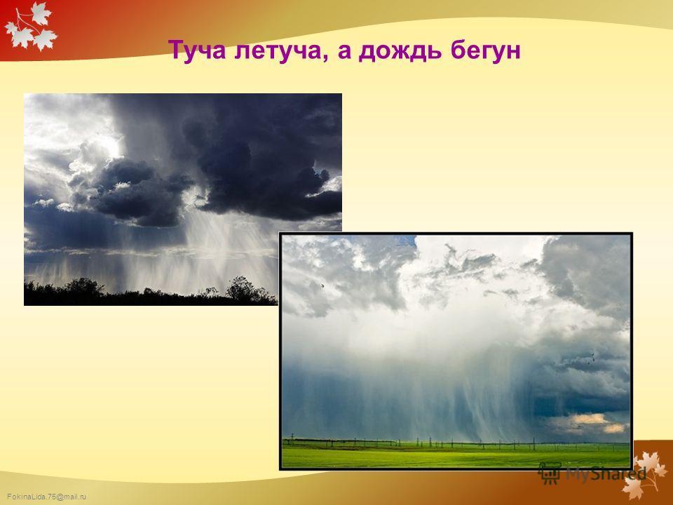 FokinaLida.75@mail.ru Туча летуча, а дождь бегун