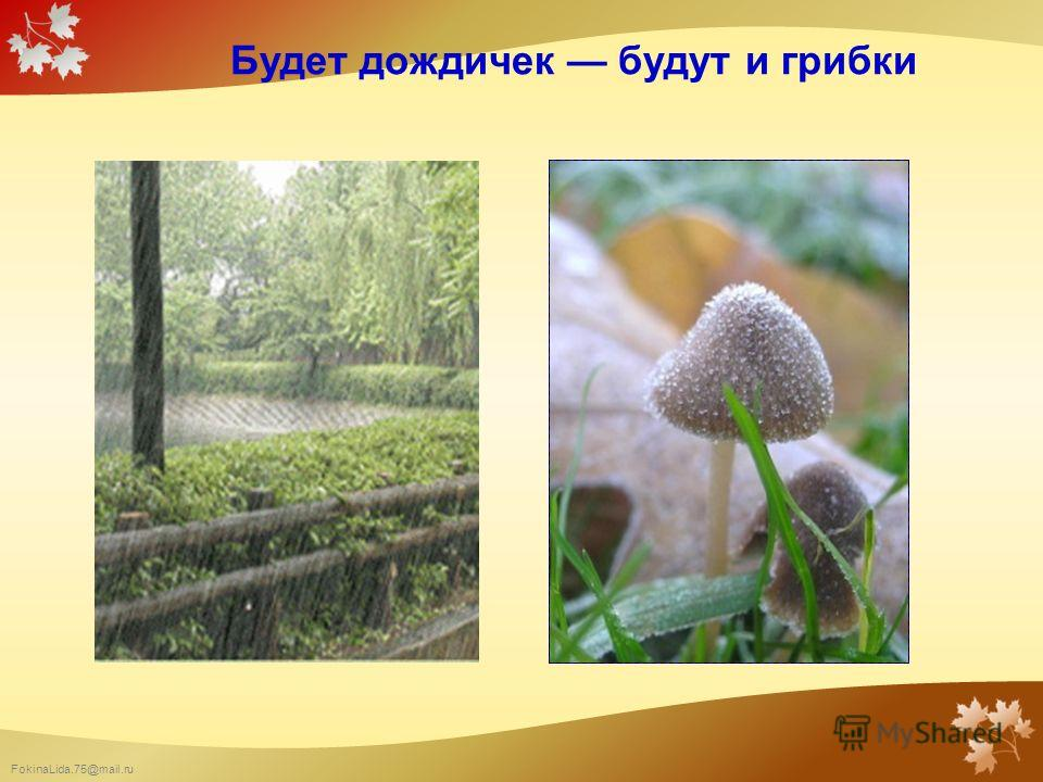 FokinaLida.75@mail.ru Будет дождичек будут и грибки