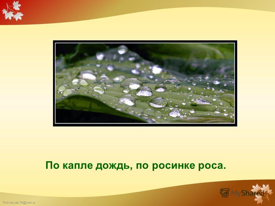 FokinaLida.75@mail.ru По капле дождь, по росинке роса.