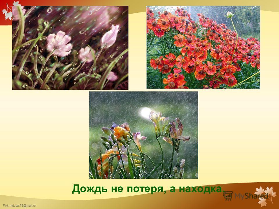 FokinaLida.75@mail.ru Дождь не потеря, а находка.