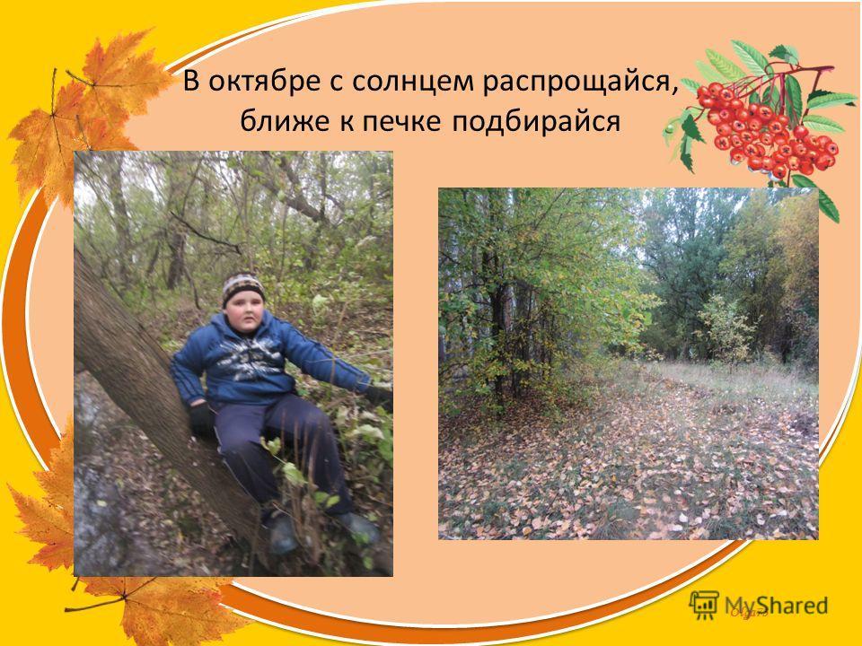 Olga73 В октябре с солнцем распрощайся, ближе к печке подбирайся