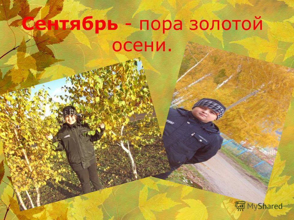 Сентябрь - пора золотой осени.