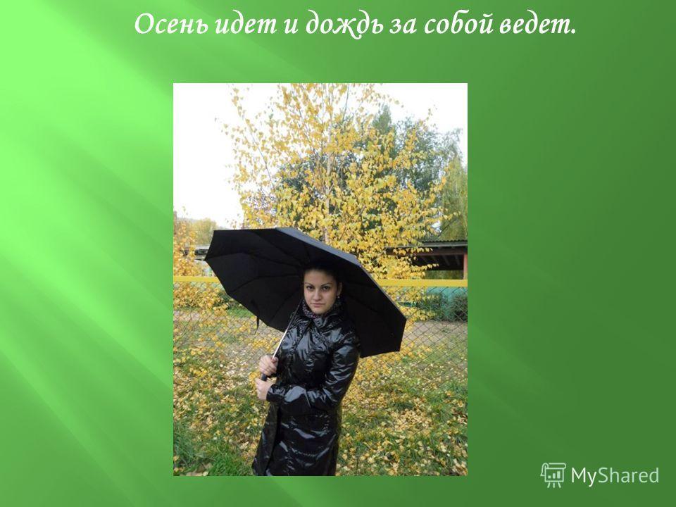 Осень идет и дождь за собой ведет.