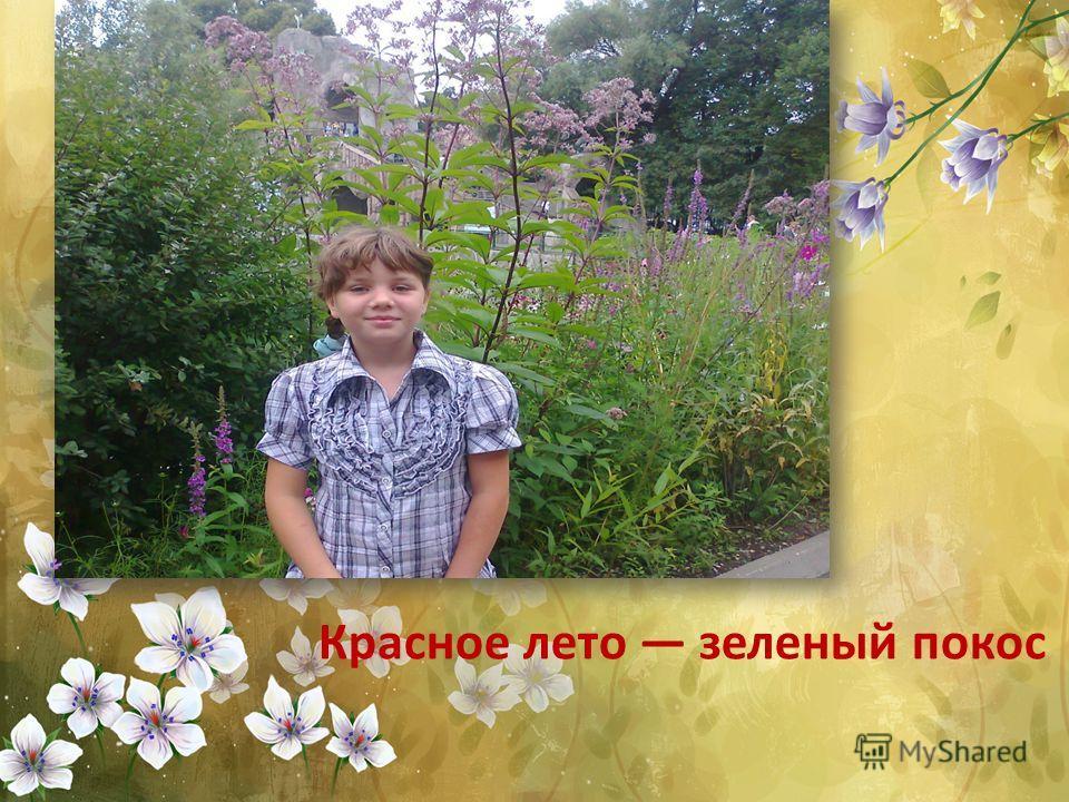 Красное лето зеленый покос