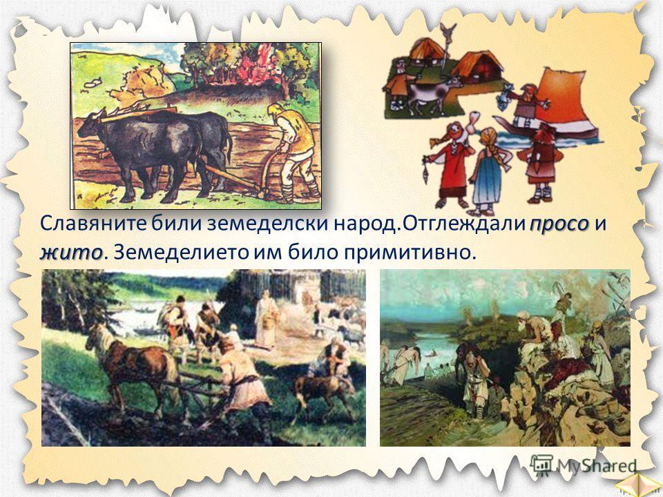 просо жито Славяните били земеделски народ.Отглеждали просо и жито. Земеделието им било примитивно.