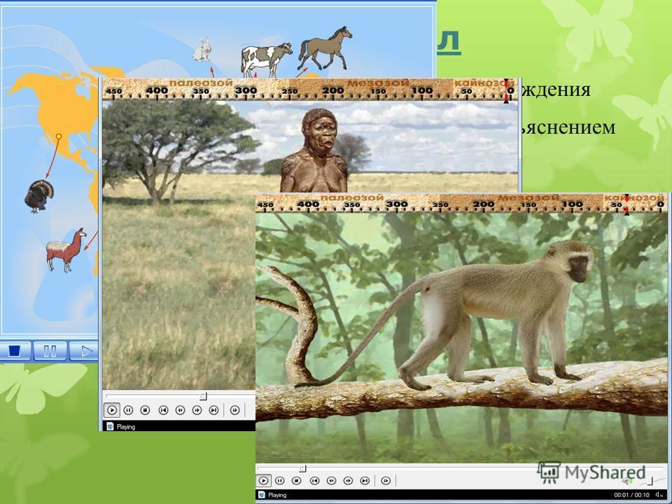 Аудио/видео материал Представлено анимационное видео этапов происхождения Представлена графическая презентация с аудио объяснением
