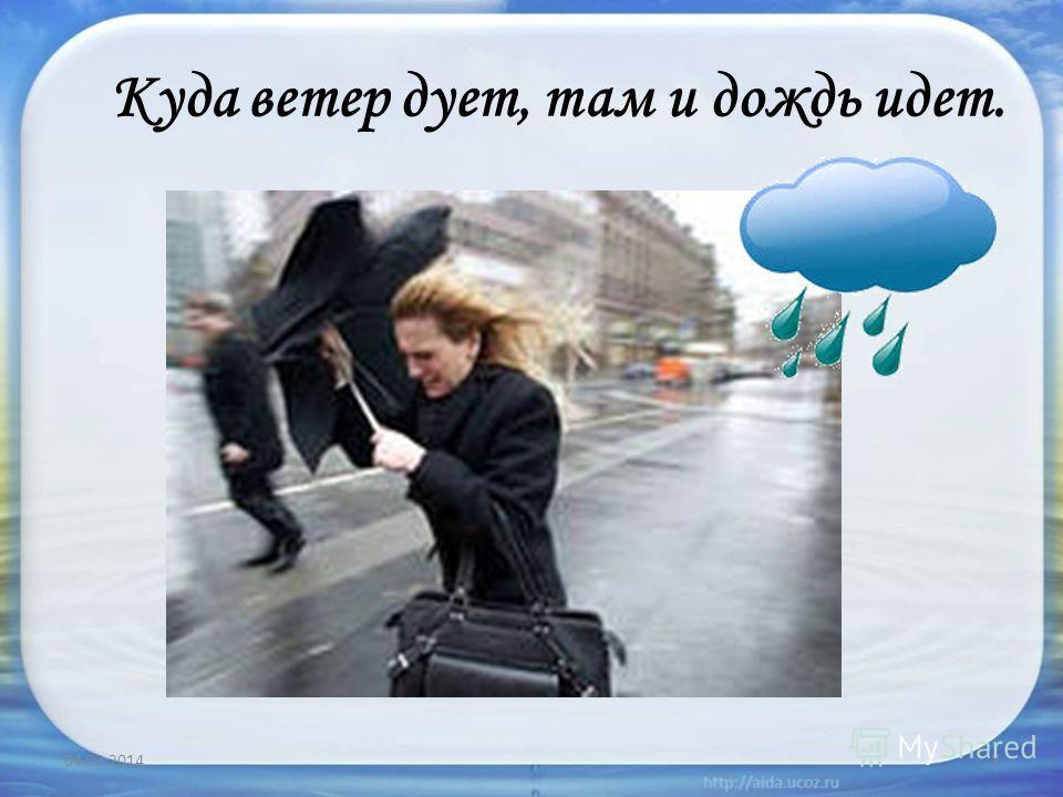 Куда ветер дует, там и дождь идет. 04.03.20147