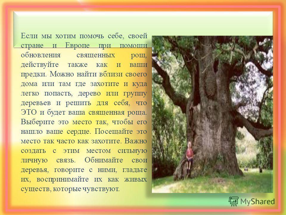 Если мы хотим помочь себе, своей стране и Европе при помощи обновления священных рощ, действуйте также как и ваши предки. Можно найти вблизи своего дома или там где захотите и куда легко попасть, дерево или группу деревьев и решить для себя, что ЭТО