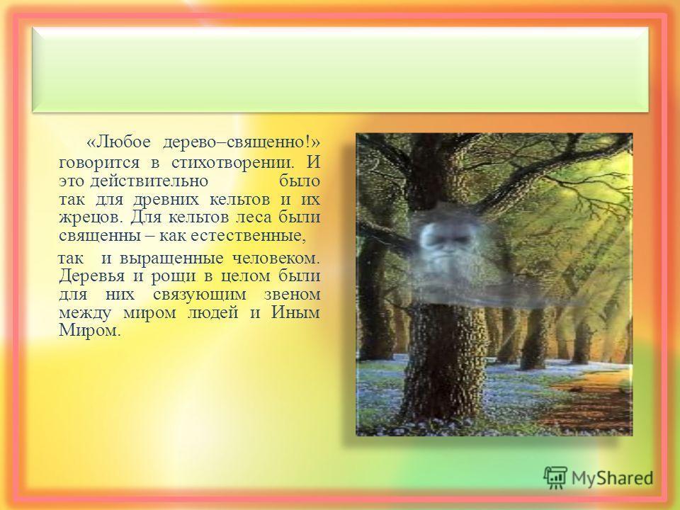 « Любое дерево – священно !» говорится в стихотворении. И это действительно было так для древних кельтов и их жрецов. Для кельтов леса были священны – как естественные, так и выращенные человеком. Деревья и рощи в целом были для них связующим звеном