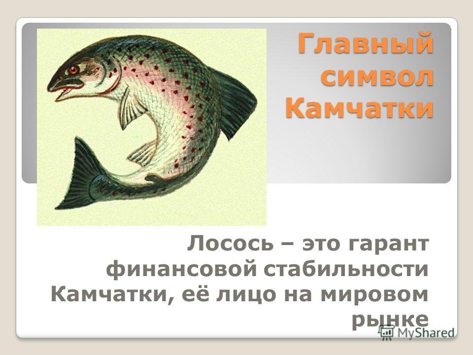 Главный символ Камчатки Лосось – это гарант финансовой стабильности Камчатки, её лицо на мировом рынке