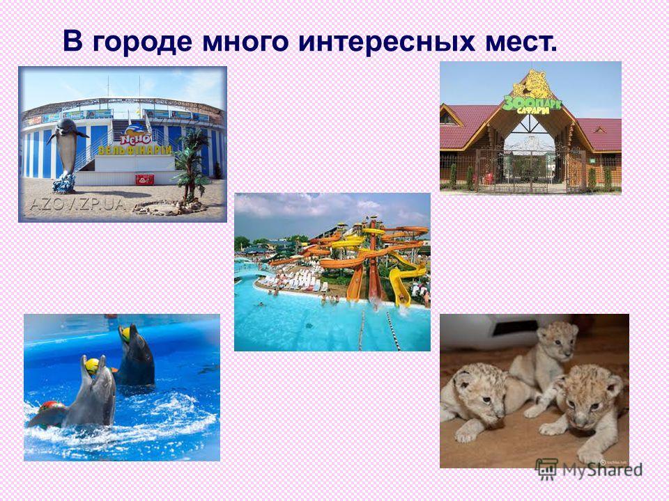 Бердянск – грязевой и климатический курорт.